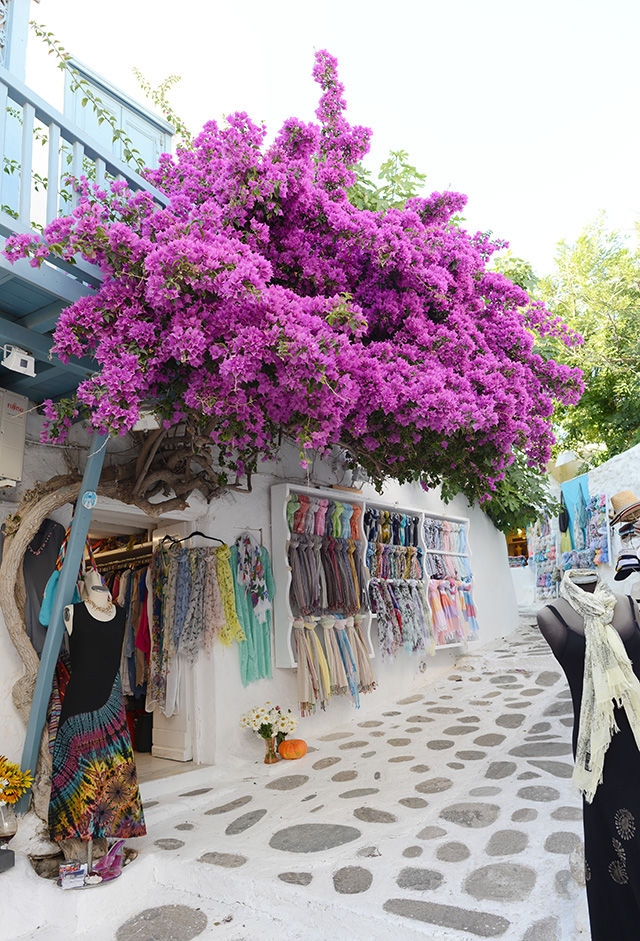 Shop and Twirl | Moments from Mykonos 17